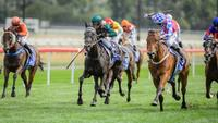 Matt Dale win $50,000 Federal with Fun Tickets to keep Canberra trainers unbeaten