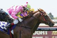 Gold Front graduate set for Gimcrack Stakes