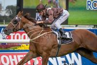 SNITZEL FILLIES ARE PROVING A SWEET IDEA