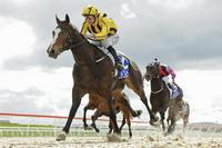 PURITAN SIZZLES ON DEBUT