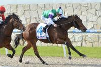 STABLE NEWS - KARDASHING AIMING FOR STAKES SUCCESS
