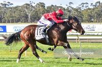 Miss Toorak Flyer wins again
