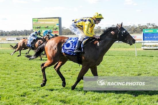Paint this city land the spoils at Bendigo