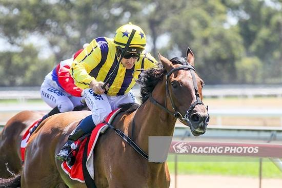 Royal Zephyr salutes for an old stable favourite