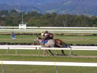Experienced Track Work Rider Required