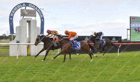 Misty Mountain Hop Breaks His Maiden at Kembla Grange