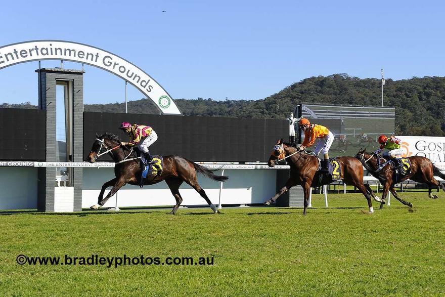 2nd Win for Misty Mountain Hop