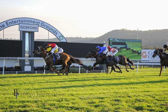 Hatrick Win For Red Dream