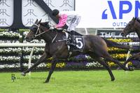 Heartlet ready for step up at headquarters in Christmas Cup