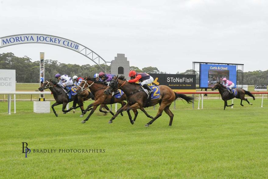 Storm Attack Breaks His Maiden Win at Moruya