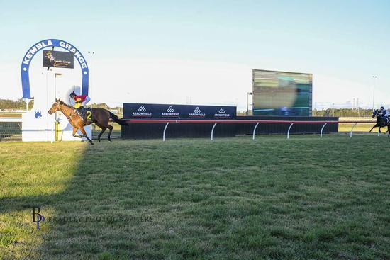 Two Wins on the Trot at Home Track for Virgilio