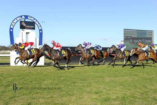 Gutsy Win by Genoveffa at Kembla Grange