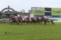 Think it Over Wins at Randwick over 2000 metres