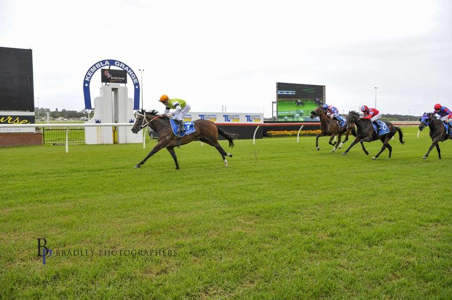 Sorridere Ticks Off Her Maiden Win at Kembla Grange