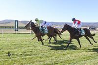 Everjust Records Her Maiden Win on Debut for Stable