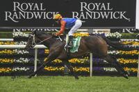 Success in the Group 3 Craven Plate for Think it Over