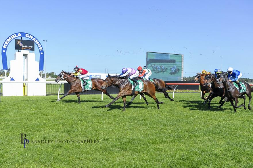 Don Luigi Locks Down His Maiden Win at Kembla Grange