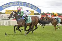 Misty Brook Wins on New Years Eve at Nowra