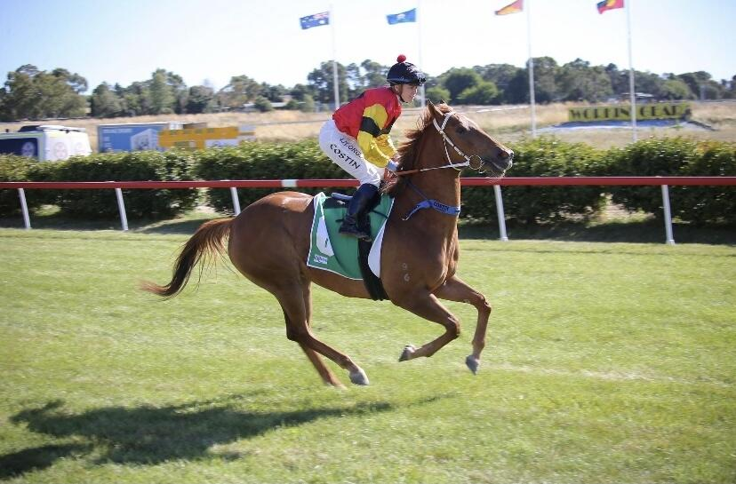Judge's Daughter Wins First Up for New Stable at Queanbeyan