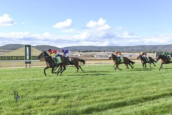 2nd Win on the Board for 3 Year Old Gelding by Nicconi, Don Luigi at Goulburn