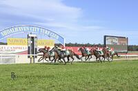 Back to Back Wins for Consistent 4y/o Headwater Mare, Role Play