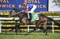 Success For Think It Over in Group 3 Craven Plate on Everest Day
