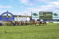 Think It Over Wins the Group 2, $1,000,000 Yulong Hill Stakes at Randwick