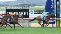 Ulundi Wins Swettenham Stud Lord Stakes
