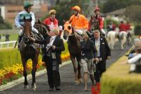 Australian Derby winner Ethiopia's owners go to hell and back