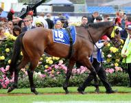 Cup Trainer, Owners Have Early Success