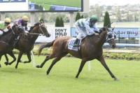 Group 1 chance for Gondokoro