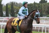 Queensland Derby possible for Gondokoro