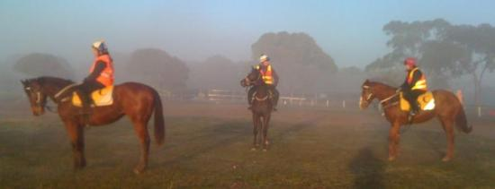 EARLY MORNING TRACKWORK WITH THE BABIES