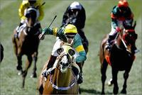 Thong Classic - MVRC Moonee Valley Gold Cup 2500m.jpg