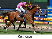Kelthorpe - MVRC Open Hcp 1200m - (Stable and family favourite).jpg