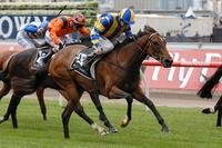 Influential Miss - VRC Schiavello Plate 1700m - (Melb. Cup Week).jpg