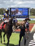 Toorak Cowboy salutes at Sandown