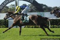 Press Report worthy of place in TJ Smith Stakes