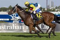 Firmer Grafton track to suit Turbulent Jet