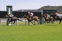 Second win at Gosford for Bonbonniere