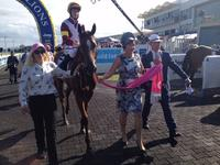 Expressions of interest - Magic Millions Ladies syndicate