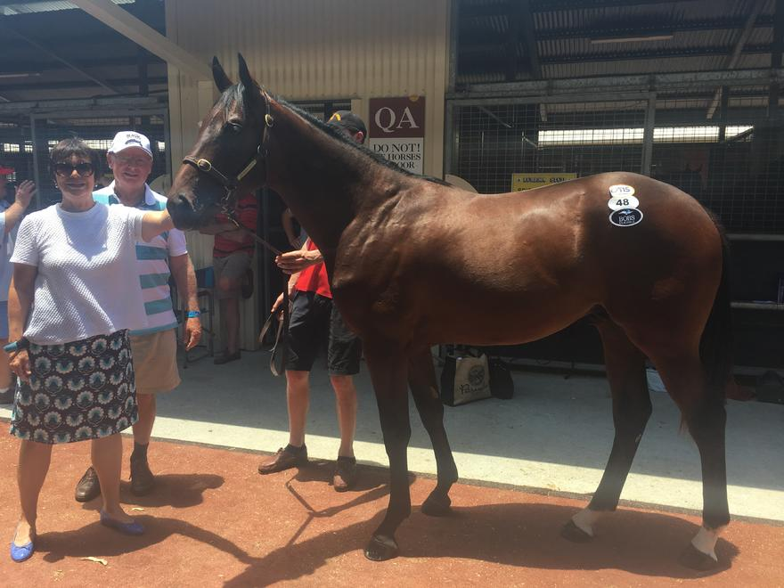 Day 1 Magic Millions purchases