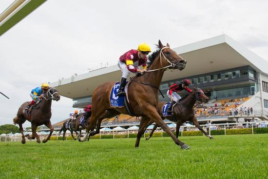 Meryl Stakes Magic Millions Classic Claims