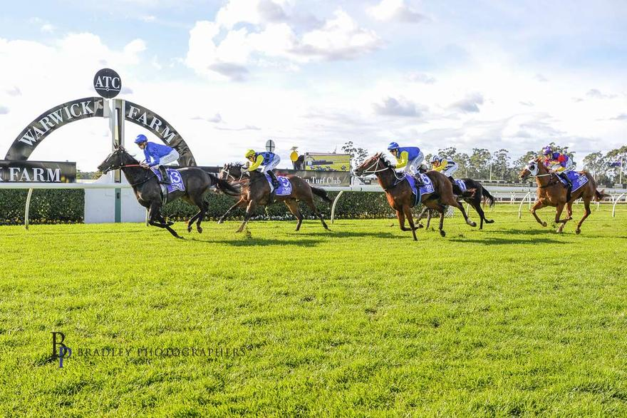 Heart of Siena shows promise at first race start