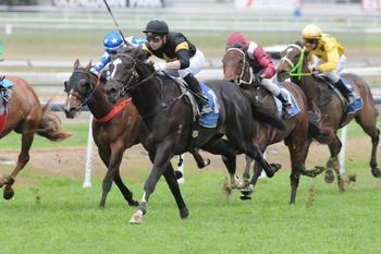 Better Than Ready starts Doomben double