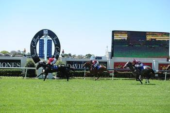 Schweida unearths a Flyer at Doomben