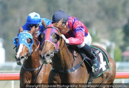 So Delicious makes a winning return