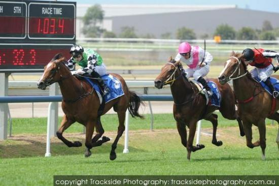 Totally Sure aims for Magic Millions Glory