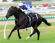 The Odyssey books place in Magic Millions Classic Field