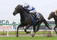 The Odyssey Crowned 2yo Horse Of The Year